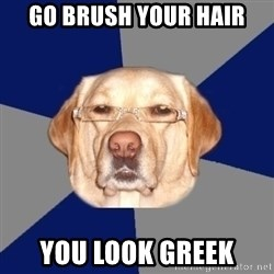Racist Dog - go brush your hair you look greek