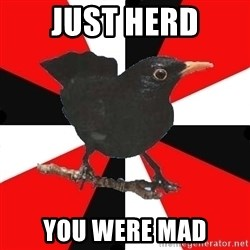 Socionic Bird - JUST HERD YOU WERE MAD