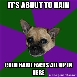 WTF dog - it's about to rain cold hard facts all up in here