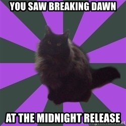 Judgemental cat - You saw Breaking dawn At the midnight release