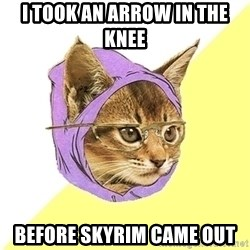 Hipster Kitty - I took an arrow in the knee before skyrim came out