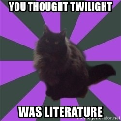 Judgemental cat - You thought twilight was literature