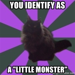 "Judgemental cat - You identify as A ""Little Monster"""