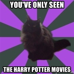 Judgemental cat - You've only seen the Harry potter movies