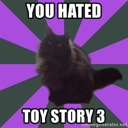 Judgemental cat - You hated toy story 3