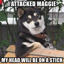 Gay Dog - i attacked maggie my head will be on a stick