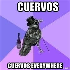 Heincrow -    CUERVOS    CUERVOS EVERYWHERE
