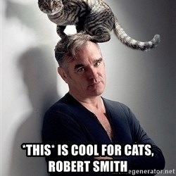 morrissey - *THIS* is COOL FOR CATS, ROBERT SMITH