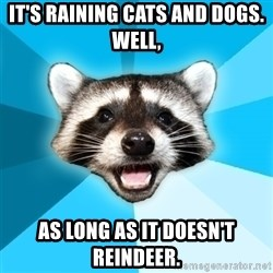 Lame Pun Coon - It's raining cats and dogs. Well,  AS LONG AS IT DOESN'T REINDEER.