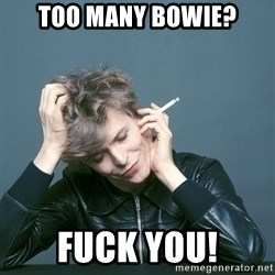 Typical-Bowie-Fan - too many bowie? fuck you!