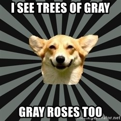 Color Blind Dog - I see trees of gray gray roses too