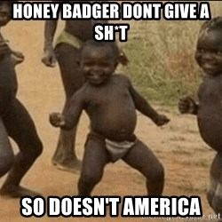 Third World Success - honey badger dont give a sh*t so doesn't america