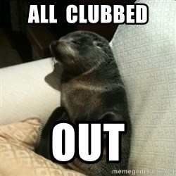 Baby Seal On Couch - All  Clubbed  OUT