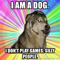 Gamer Dog - I am a dog. i don't play games. silly people.