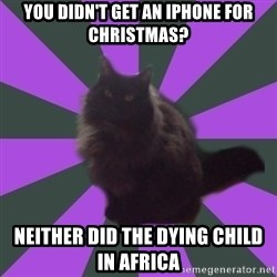 Judgemental cat - you didn't get an iphone for christmas? neither did the dying child in africa
