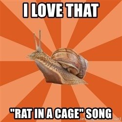 """Clueless Casual Pumpkins Fan Snail - i love that """"rat in a cage"""" song"""