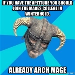 skyrim stan - if you have the APTITUDE you should join the mages college in winterhold. already arch mage
