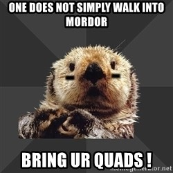 Roller Derby Otter - one does not simply walk into mordor bring ur quads !