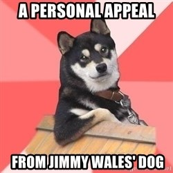 Cool Dog - A PERSONAL APPEAL  FROM JIMMY WAles' dog