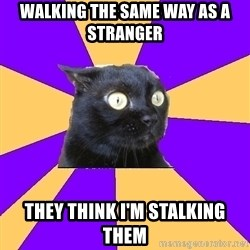 Anxiety Cat - walking the same way as a stranger they think i'm stalking them