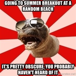 Tha Hipster Seal - going to summer breakout at a random beach it's pretty obscure, you probably haven't heard of it