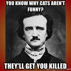 Poe - you know why cats aren't funny? they'll get you killed