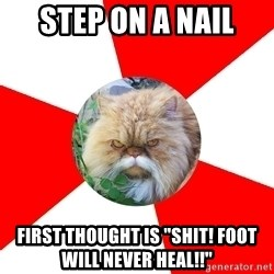 "Diabetic Cat - step on a nail first thought is ""Shit! foot will never heal!!"""