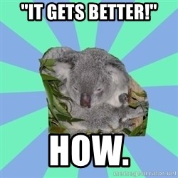 "Clinically Depressed Koala - ""it gets better!"" how."