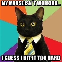 Business Cat - My mouse isn´t working... i guess i bit it too hard