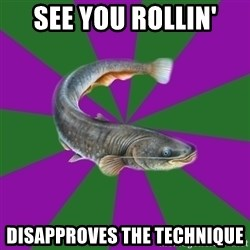 Judgemental Catfish - See you rollin' Disapproves the technique