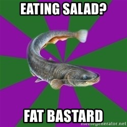 Judgemental Catfish - Eating salad? fat bastard