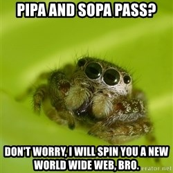 Spiderbro - PIPA AND SOPA PASS? DON'T WORRY, I WILL SPIN YOU A NEW WORLD WIDE WEB, BRO.