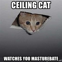 Ceiling cat - CEILING CAT WATCHES YOU MASTUReBATE