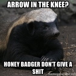 Honey Badger - Arrow in the knee? Honey badger don't give a shit