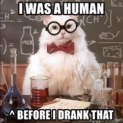 Chemistry Cat - i was a human ^ before i drank that