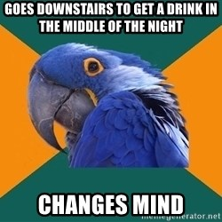 Paranoid Parrot - goes downstairs to get a drink in the middle of the night changes mind