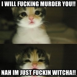 Adorable Kitten - I will fucking murder you!! nah im just fuckin witcha!!