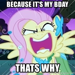 angry-fluttershy - Because it's my Bday Thats why