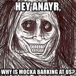Uninvited Houseguest - hey anayr, why is mocka barking at us?