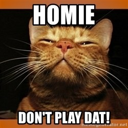 Kitty Smug - homie don't play dat!