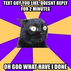 Anxiety Cat - text guy you like, doesnt reply for 2 minutes oh god what have i done