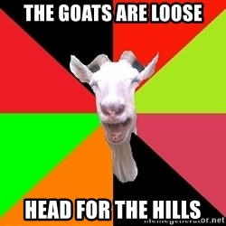 Goats - The goats are loose head for the hills