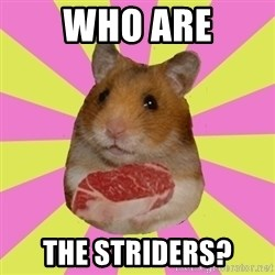 The Confused Hamsteak - Who Are the striders?