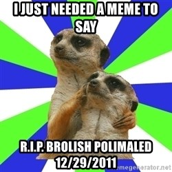 typically_we - I just needed a meme to say r.i.p. brolish polimaled 12/29/2011