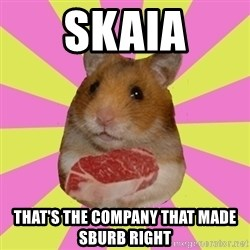 The Confused Hamsteak - skaia that's the company that made sburb right