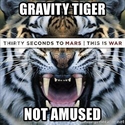 paranoid member of echelon - Gravity tiger Not amused
