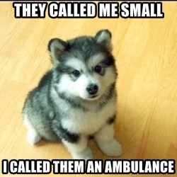Baby Courage Wolf - They called me small i called them an ambulance
