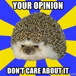 Disapproval Hedgehog - Your opinion don't care about it