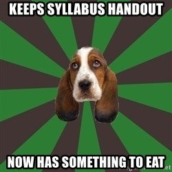 Broke College Student Basset - keeps syllabus handout now has something to eat