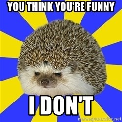 Disapproval Hedgehog - You think you're funny I don't